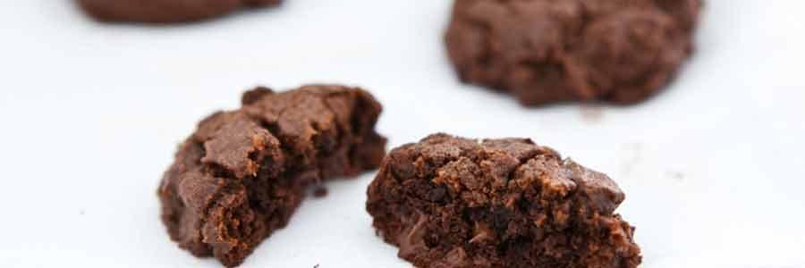Fudgy Cocoa Bites