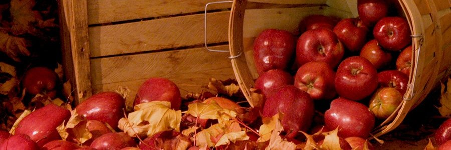 Three Braces Friendly Recipes for Fall that are Filled with Apple Goodness
