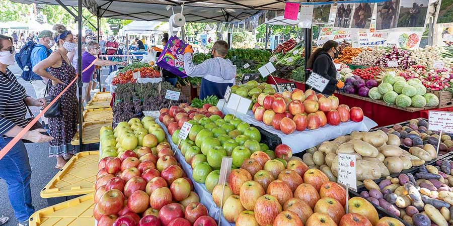 Produce, vendors, and visitors at the Vancouver Farmers Market