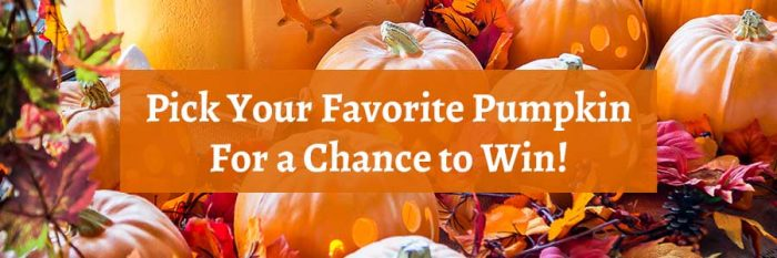 Pick Your Favorite Pumpkin for a Chance to Win!