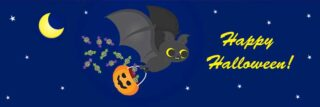 Cute illustrated bat in the sky holding a pumpkin with candy flying out of it representing Halloween fun in Vancouver Washington